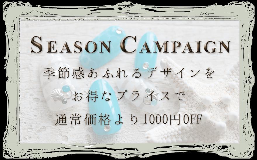 季節感あふれるデザインをお得なプライスで 通常価格より1000円OFF